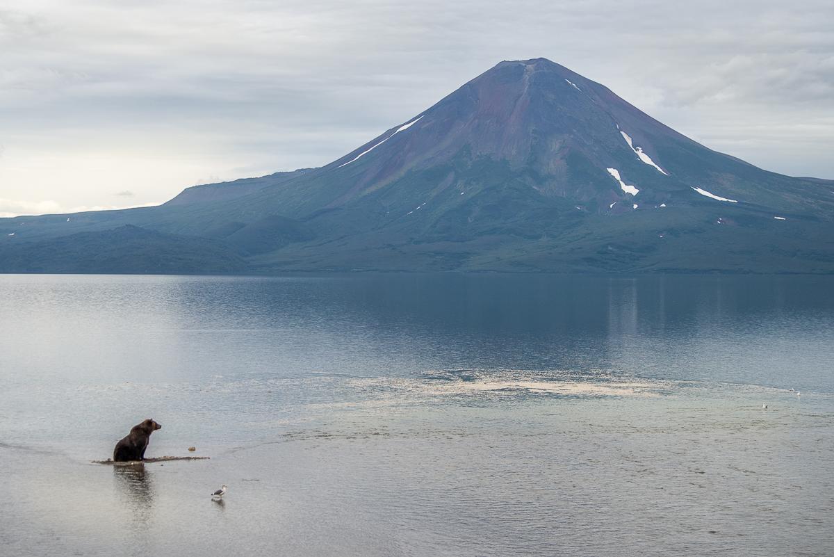 Kamchatka Katti Borre photo book