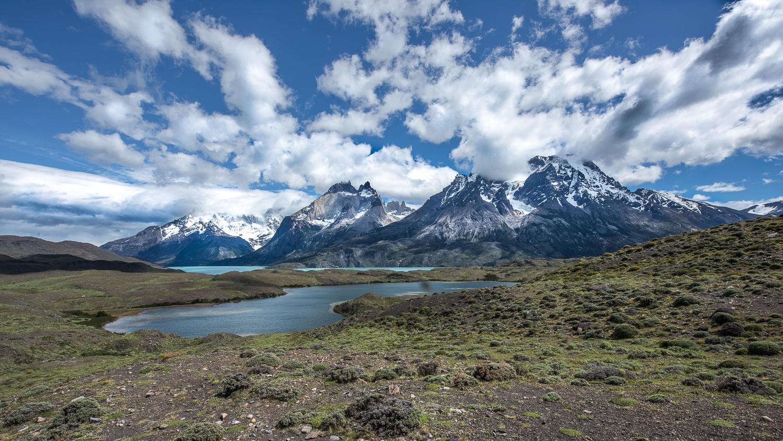 Patagonia katti borre