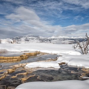 Yellowstone in winter landscape photo
