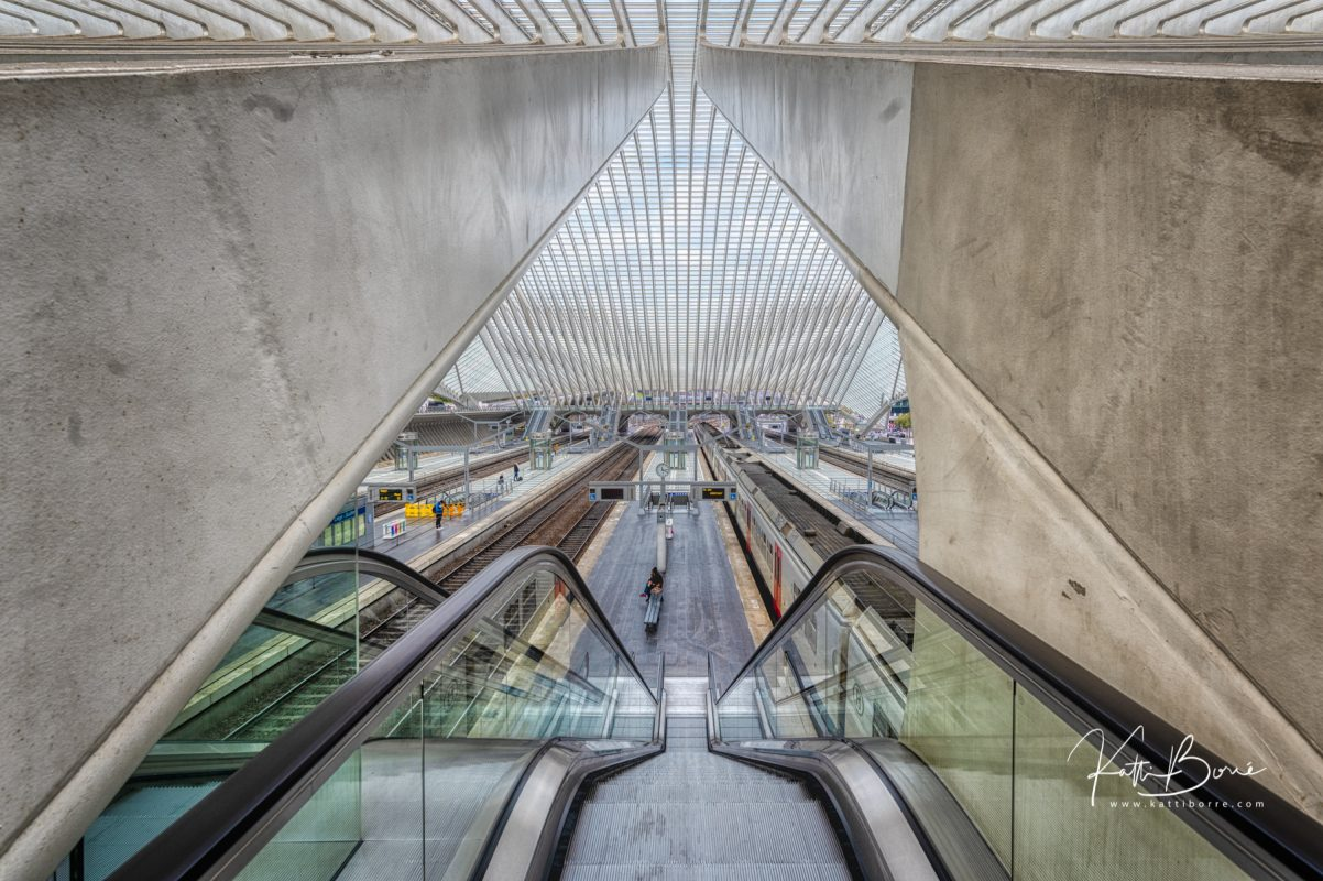 calatrava liege guillemins trainstation by katti borre