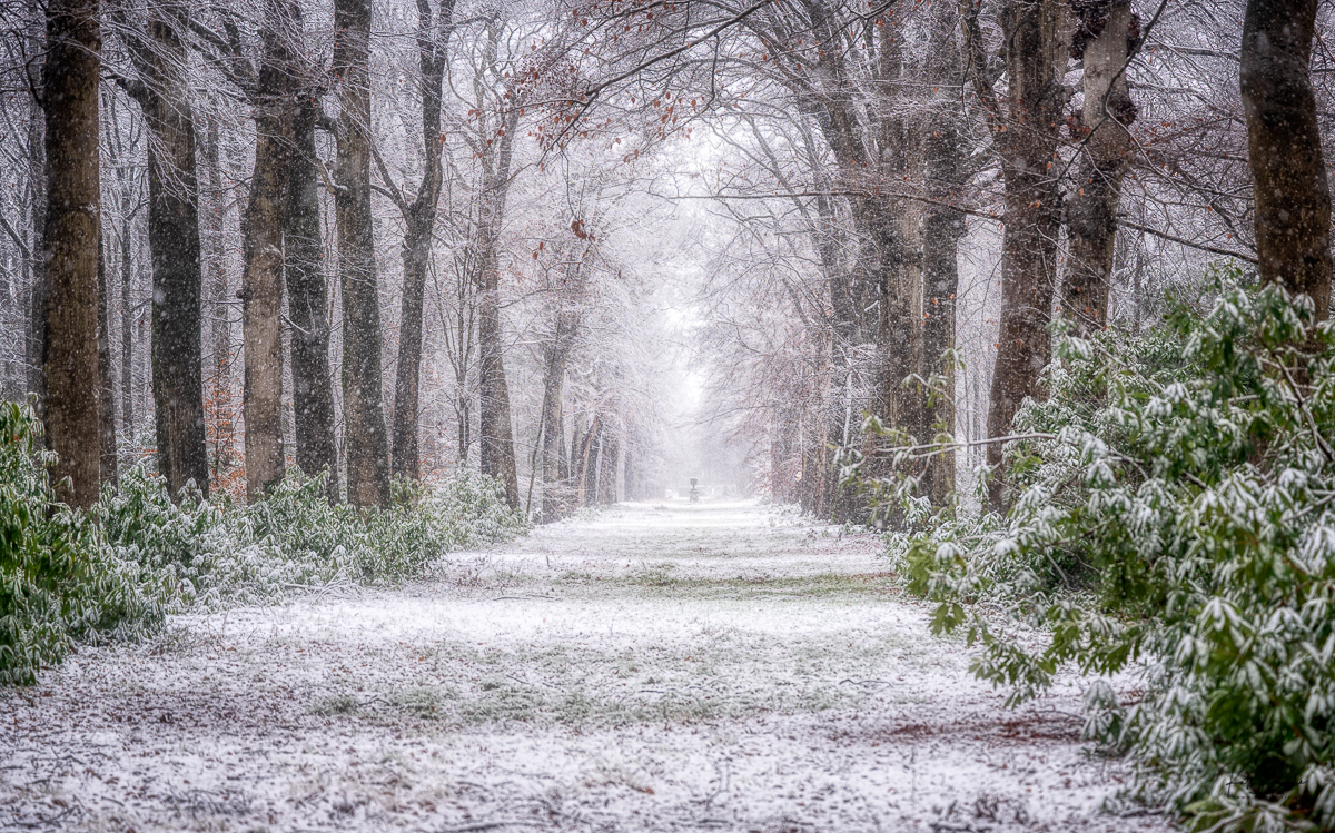 sneeuw in vlaanderen by katti borre